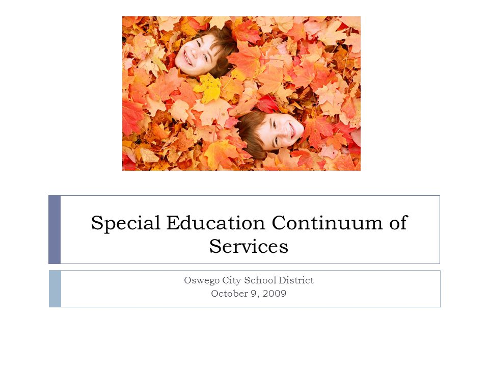 Special Education Continuum of Services Oswego City School District October 9, 2009