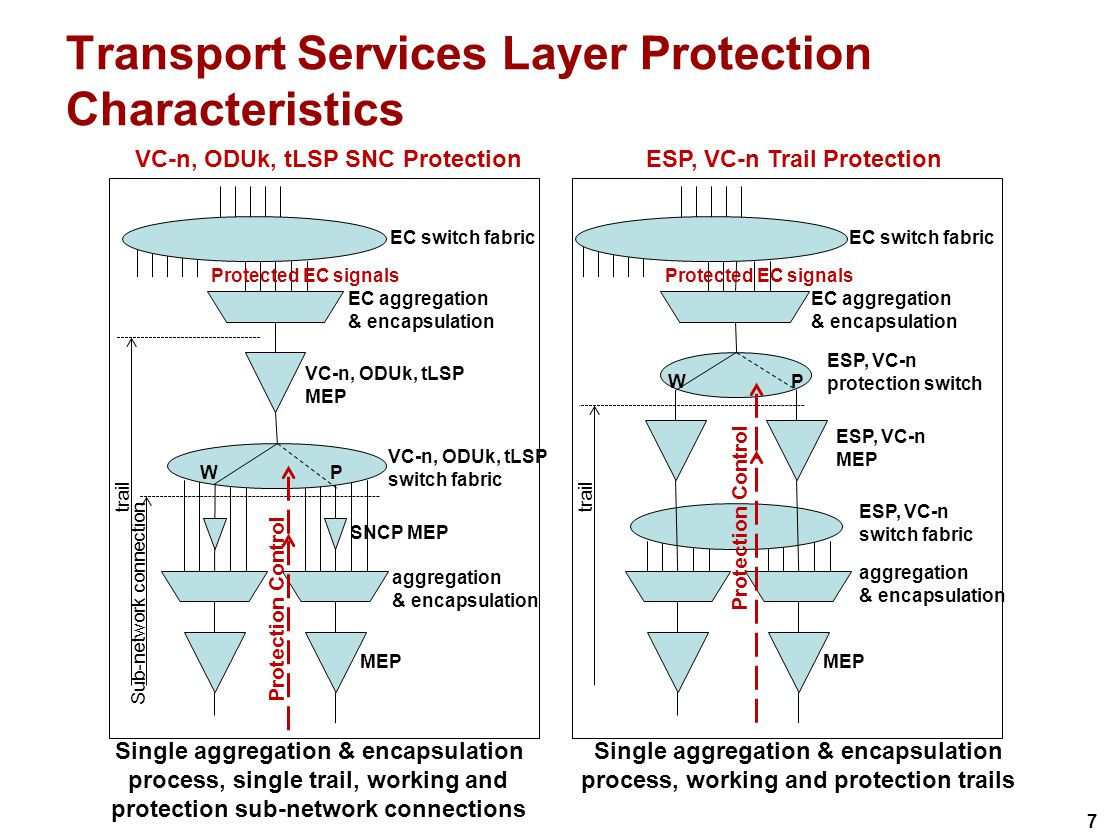 7 Transport Services Layer Protection Characteristics VC-n, ODUk, tLSP MEP EC aggregation & encapsulation Protected EC signals VC-n, ODUk, tLSP switch fabric WP MEP VC-n, ODUk, tLSP SNC Protection trail Sub-network connection ESP, VC-n MEP EC aggregation & encapsulation Protected EC signals ESP, VC-n switch fabric MEP ESP, VC-n Trail Protection trail aggregation & encapsulation aggregation & encapsulation WP ESP, VC-n protection switch SNCP MEP Single aggregation & encapsulation process, working and protection trails Single aggregation & encapsulation process, single trail, working and protection sub-network connections Protection Control EC switch fabric