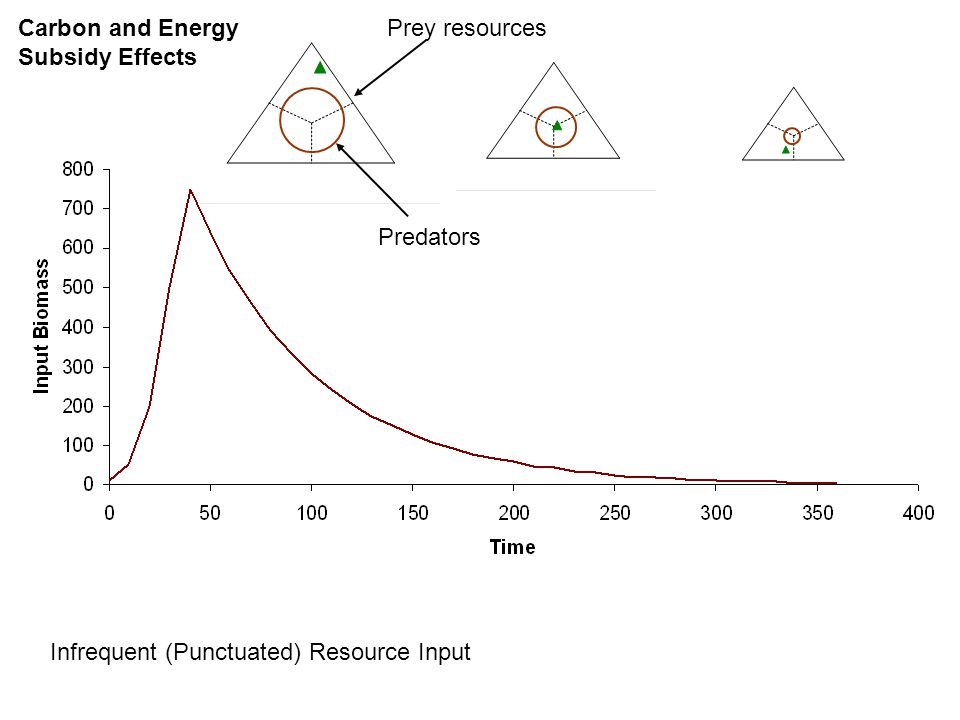 Frequent (Continuous) Resource Input Carbon and Energy Subsidy Effects Prey resources Predators