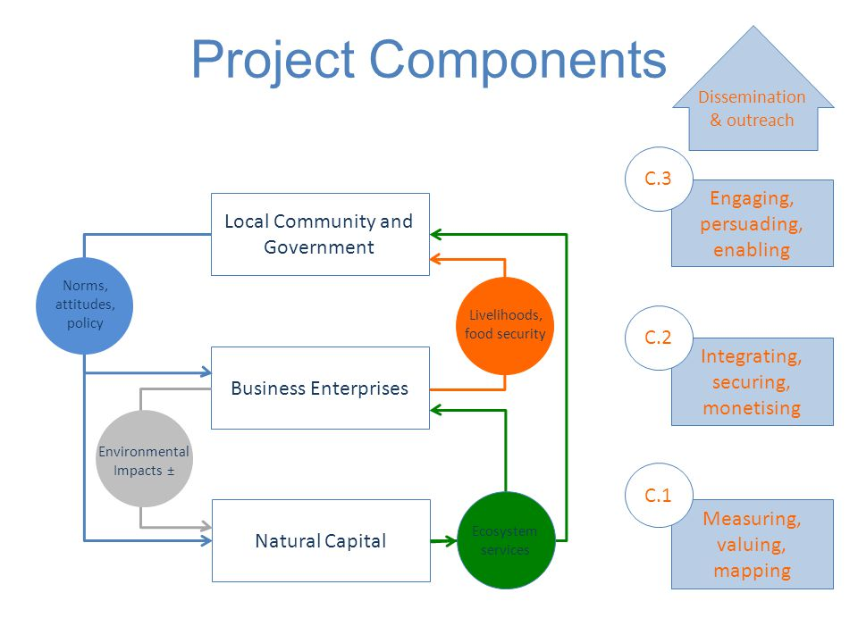 Natural Capital Business Enterprises Local Community and Government Ecosystem services Norms, attitudes, policy Environmental Impacts ± Livelihoods, f