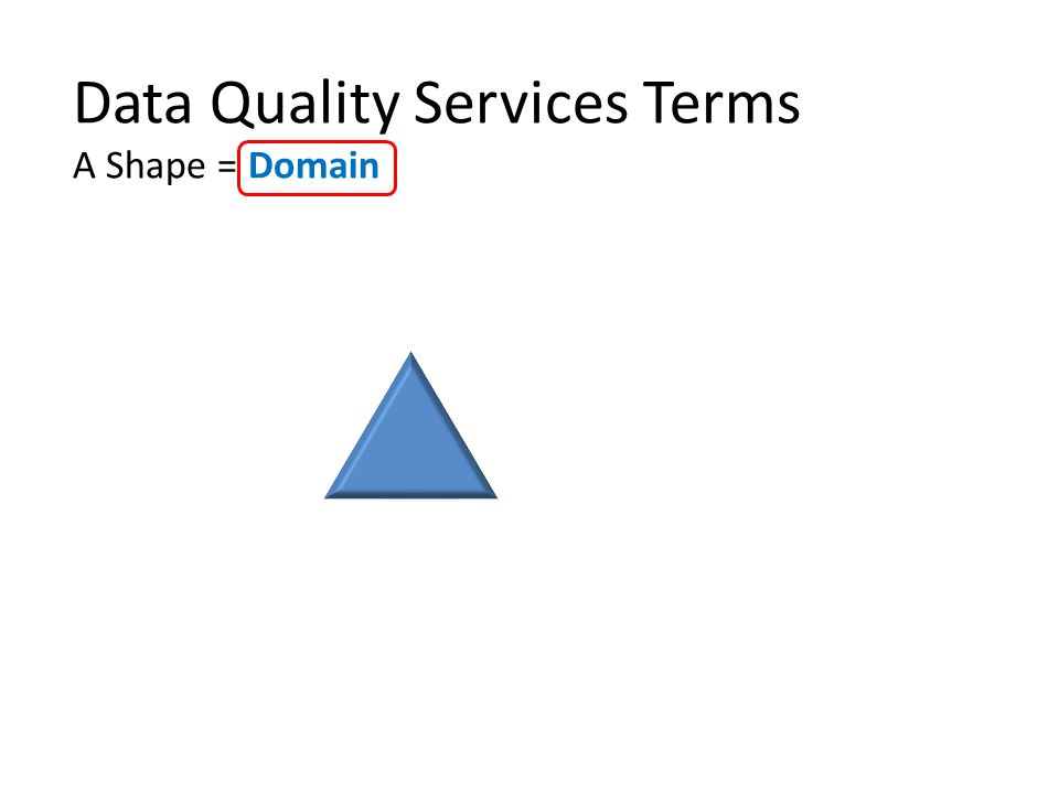 Data Quality Services Terms A Shape = Domain