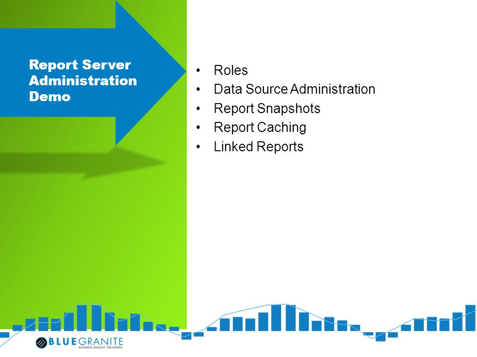 Report Server Administration Demo Roles Data Source Administration Report Snapshots Report Caching Linked Reports