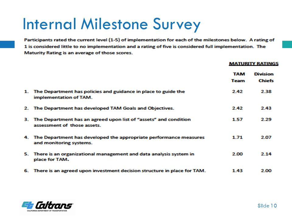 Internal Milestone Survey Slide 10