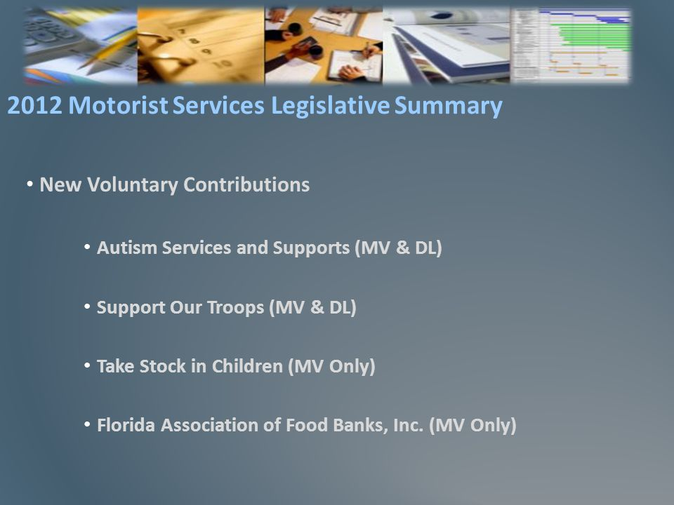 New Voluntary Contributions Autism Services and Supports (MV & DL) Support Our Troops (MV & DL) Take Stock in Children (MV Only) Florida Association of Food Banks, Inc.