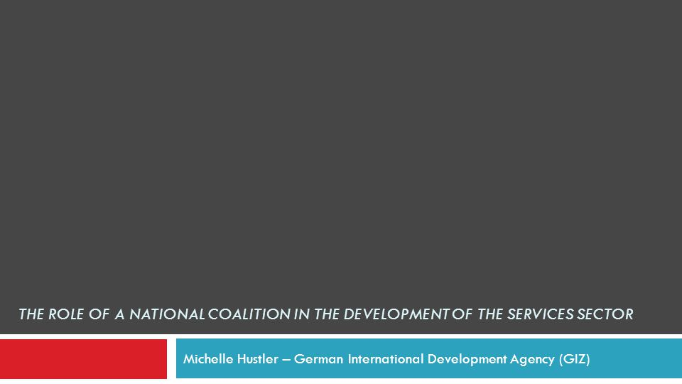 THE ROLE OF A NATIONAL COALITION IN THE DEVELOPMENT OF THE SERVICES SECTOR Michelle Hustler – German International Development Agency (GIZ)