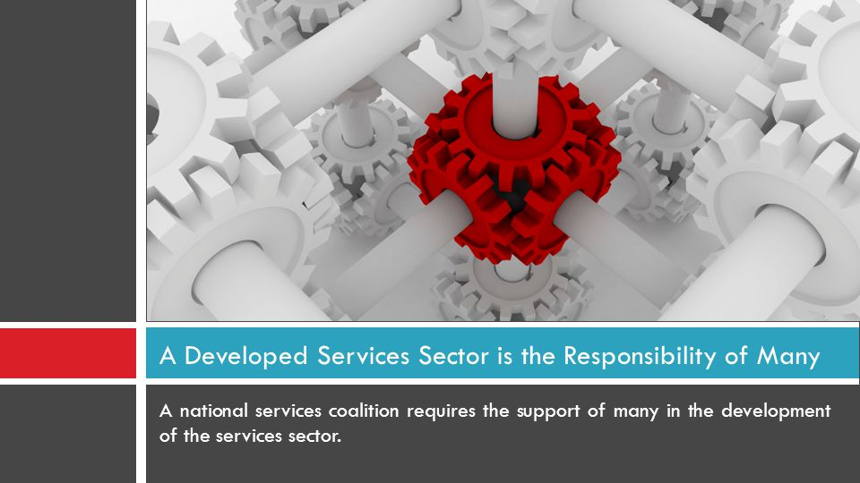 A national services coalition requires the support of many in the development of the services sector. A Developed Services Sector is the Responsibilit