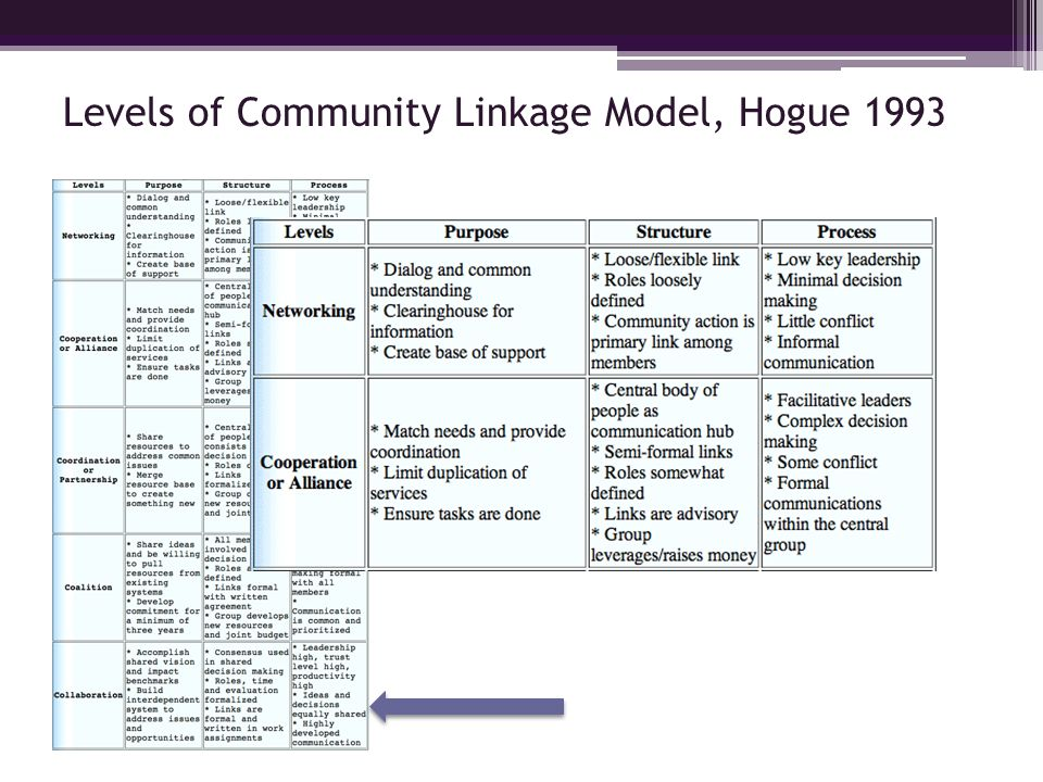 Levels of Community Linkage Model, Hogue 1993