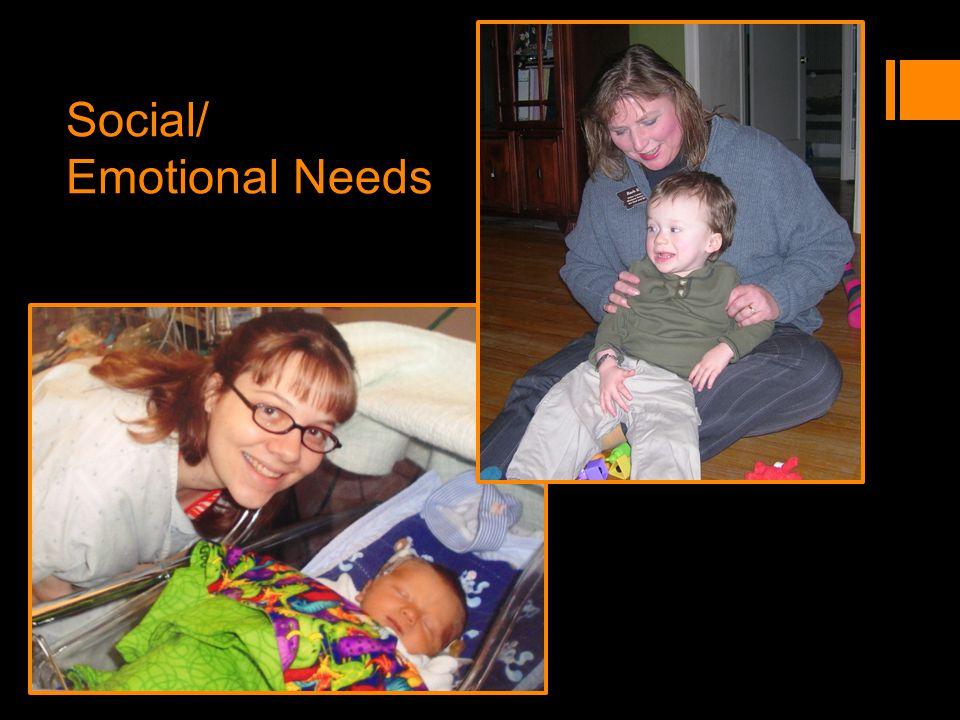 Social/ Emotional Needs