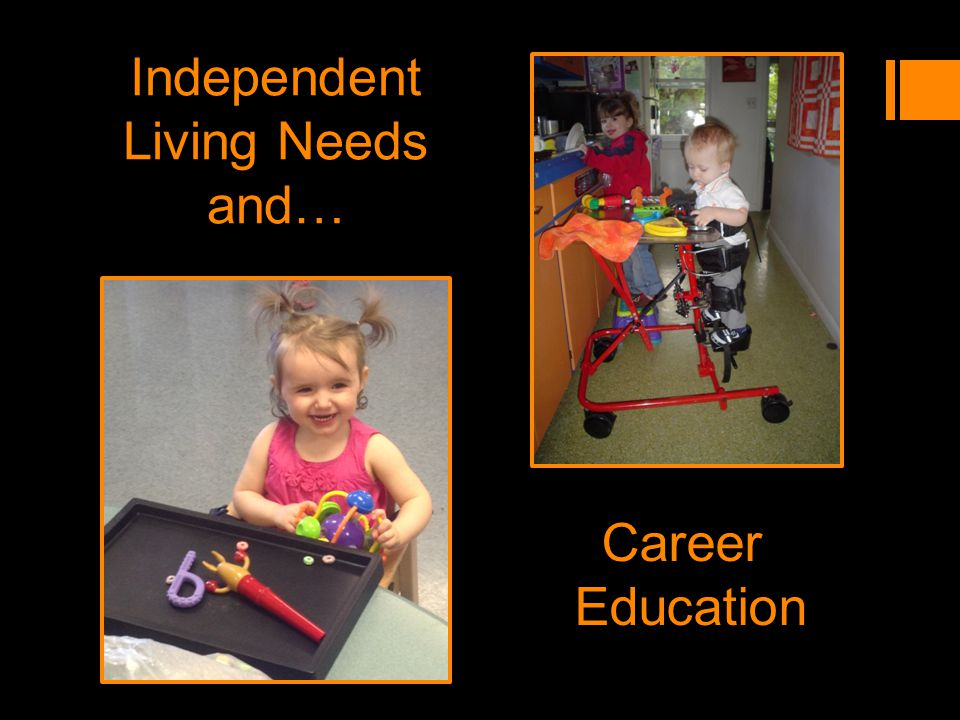 Independent Living Needs and… Career Education