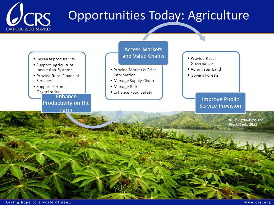 Opportunities Today: Agriculture ICT in Agriculture, The World Bank, 2011 Increase productivity Support Agriculture Innovation Systems Provide Rural Financial Services Support Farmer Organizations Enhance Productivity on the Farm Provide Market & Price Information Manage Supply Chain Manage Risk Enhance Food Safety Access Markets and Value Chains Provide Rural Governance Administer Land Govern Forests Improve Public Service Provision