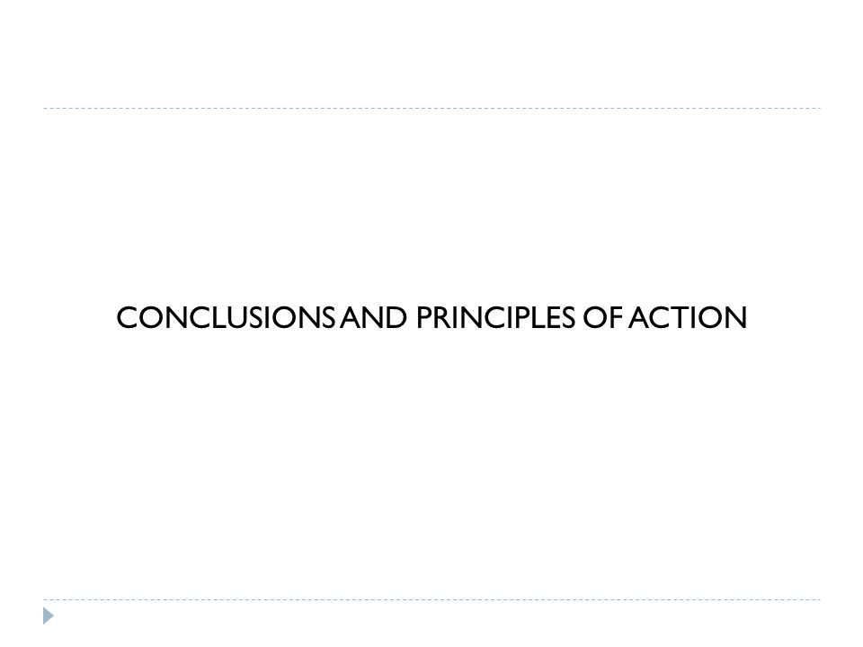 CONCLUSIONS AND PRINCIPLES OF ACTION