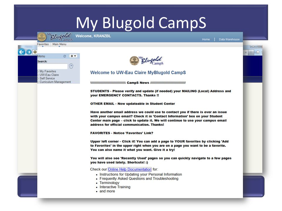 My Blugold CampS