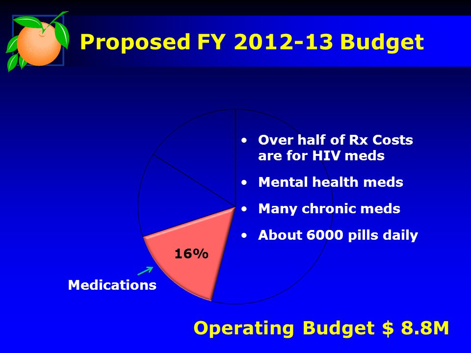 16% Operating Budget $ 8.8M Over half of Rx Costs are for HIV meds Mental health meds Many chronic meds About 6000 pills daily Medications Proposed FY