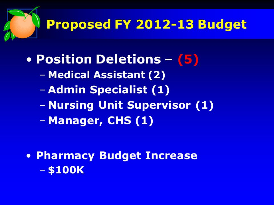 Offsite Medical Other Medications Lakeside 16% 14% 53% Operating Budget $ 8.8M Proposed FY 2012-13 Budget