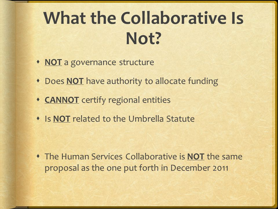 What is the Human Services Collaborative.