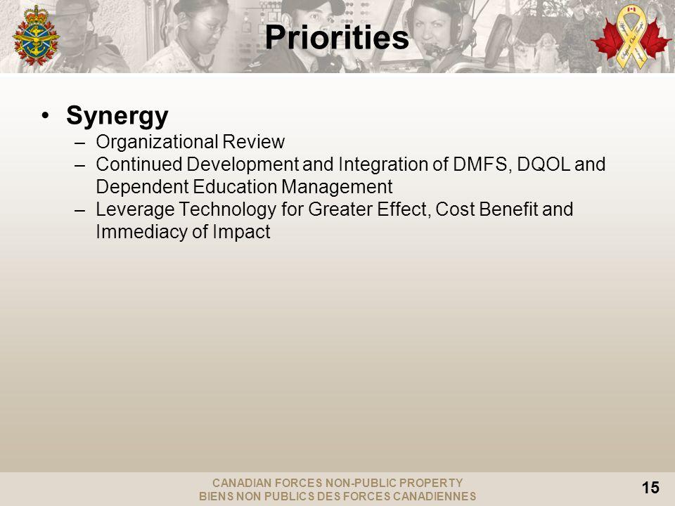 CANADIAN FORCES NON-PUBLIC PROPERTY BIENS NON PUBLICS DES FORCES CANADIENNES 15 Synergy –Organizational Review –Continued Development and Integration