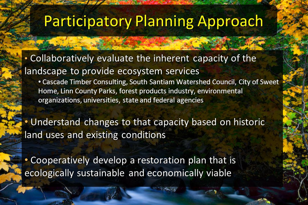 Participatory Planning Approach Collaboratively evaluate the inherent capacity of the landscape to provide ecosystem services Collaboratively evaluate the inherent capacity of the landscape to provide ecosystem services Cascade Timber Consulting, South Santiam Watershed Council, City of Sweet Home, Linn County Parks, forest products industry, environmental organizations, universities, state and federal agencies Cascade Timber Consulting, South Santiam Watershed Council, City of Sweet Home, Linn County Parks, forest products industry, environmental organizations, universities, state and federal agencies Understand changes to that capacity based on historic land uses and existing conditions Understand changes to that capacity based on historic land uses and existing conditions Cooperatively develop a restoration plan that is ecologically sustainable and economically viable Cooperatively develop a restoration plan that is ecologically sustainable and economically viable