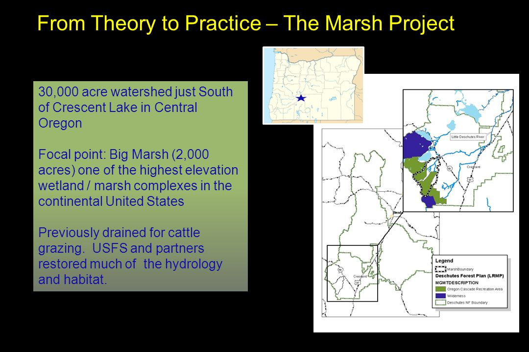 From Theory to Practice – The Marsh Project 30,000 acre watershed just South of Crescent Lake in Central Oregon Focal point: Big Marsh (2,000 acres) one of the highest elevation wetland / marsh complexes in the continental United States Previously drained for cattle grazing.