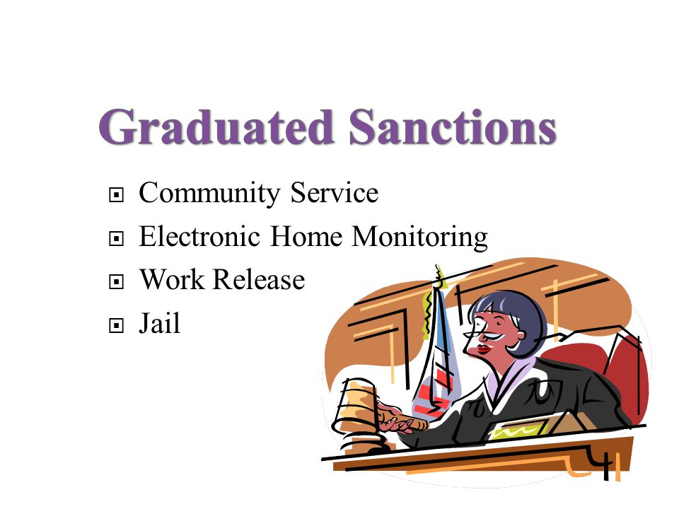Community Service Electronic Home Monitoring Work Release Jail