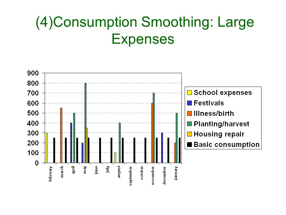 (3) Consumption smoothing: the minimum acceptable consumption level