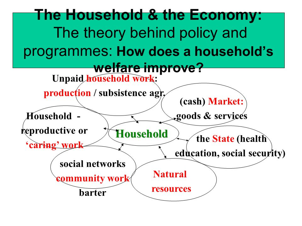 The Household & the Economy WHO IS RESPONSIBLE for providing these goods and services.