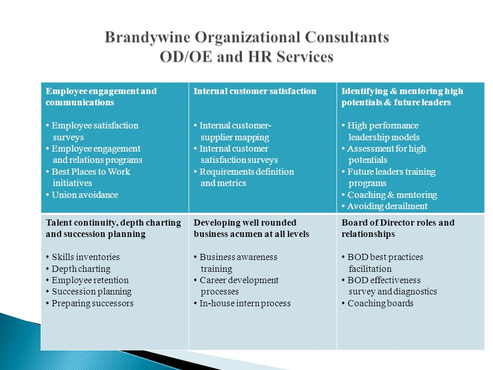Clients have the option of contracting Brandywine Organizational Consultants to provide any or all of the following services: Design the diagnostic tool Conduct the administration of the tool Collect and analyze data collected Benchmark the data against high performance models Provide a comprehensive gap analysis of client data vs.