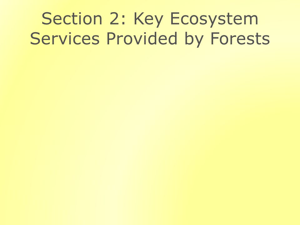 Section 2: Key Ecosystem Services Provided by Forests