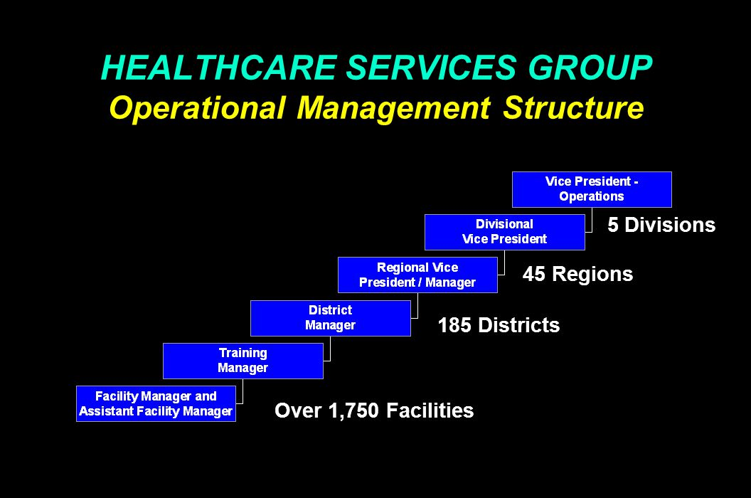 HEALTHCARE SERVICES GROUP Marketing and Sales Structure President Vice President - Marketing Director of Corporate Sales Divisional Vice Presidents Regional Vice Presidents / Managers District Managers Regional Directors Corporate Divisional Regional District