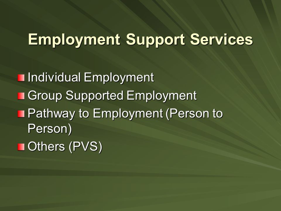 Employment Support Services Individual Employment Individual Employment is placement, training and follow- up services necessary to help persons with developmental disabilities obtain and maintain employment in the community.