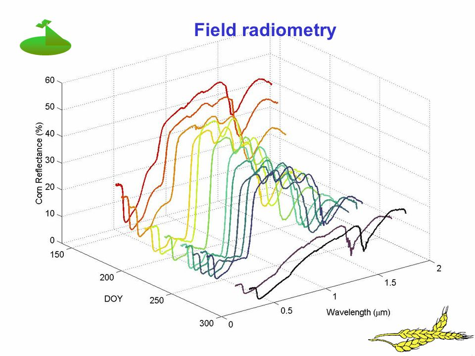Field radiometry