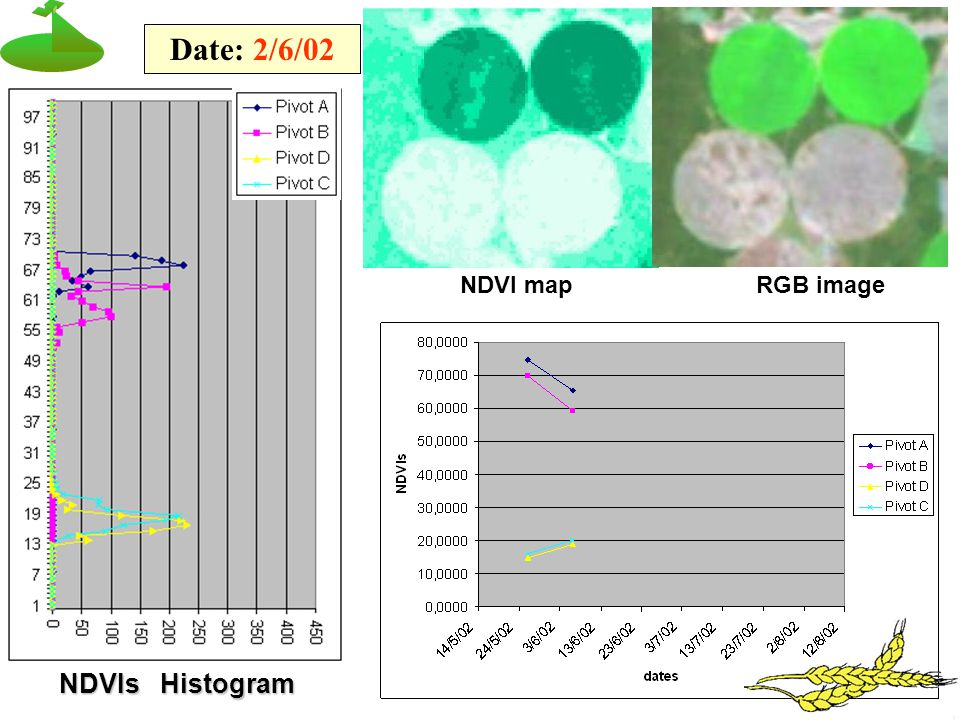 NDVIs Histogram Date: 2/6/02 NDVI mapRGB image
