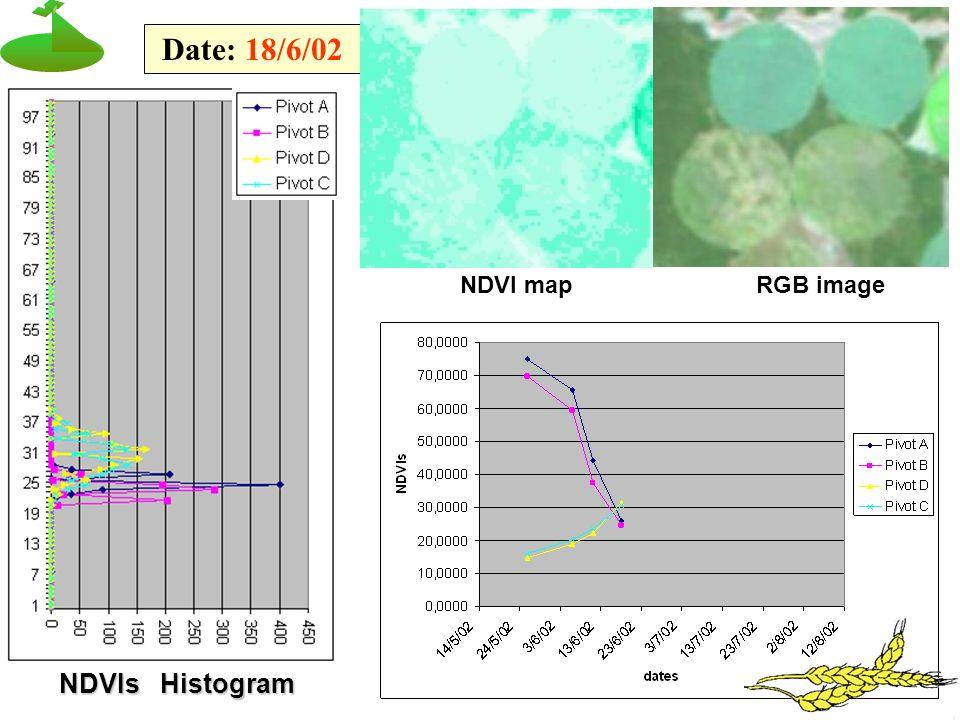 NDVIs Histogram Date: 18/6/02 NDVI mapRGB image