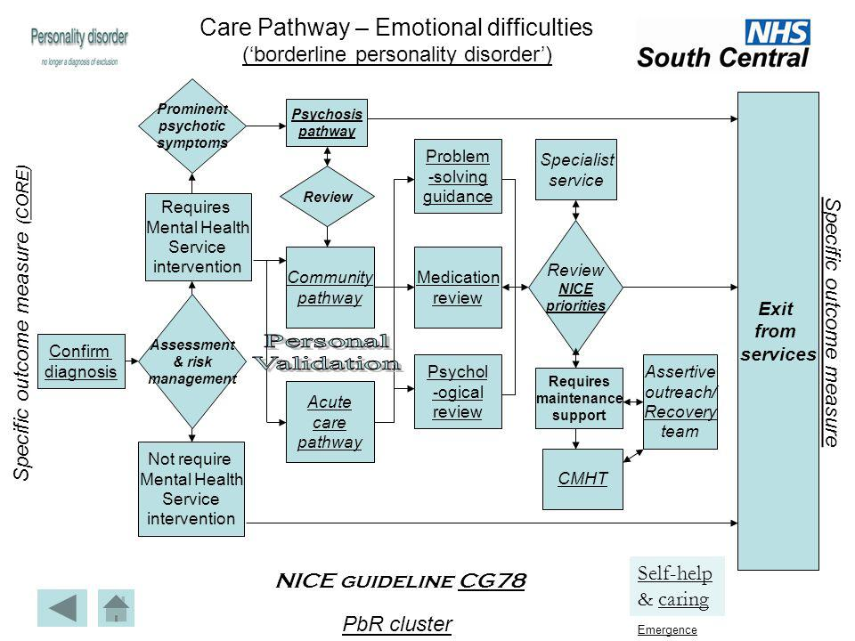 Confirm diagnosis Prominent psychotic symptoms Problem -solving guidance Community pathway Not require Mental Health Service intervention Requires Men