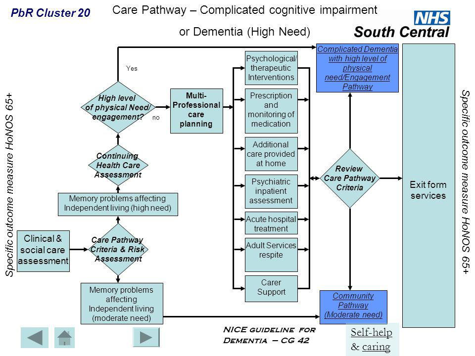 Care Pathway – Complicated cognitive impairment or Dementia (High Need) Clinical & social care assessment Care Pathway Criteria & Risk Assessment Memo