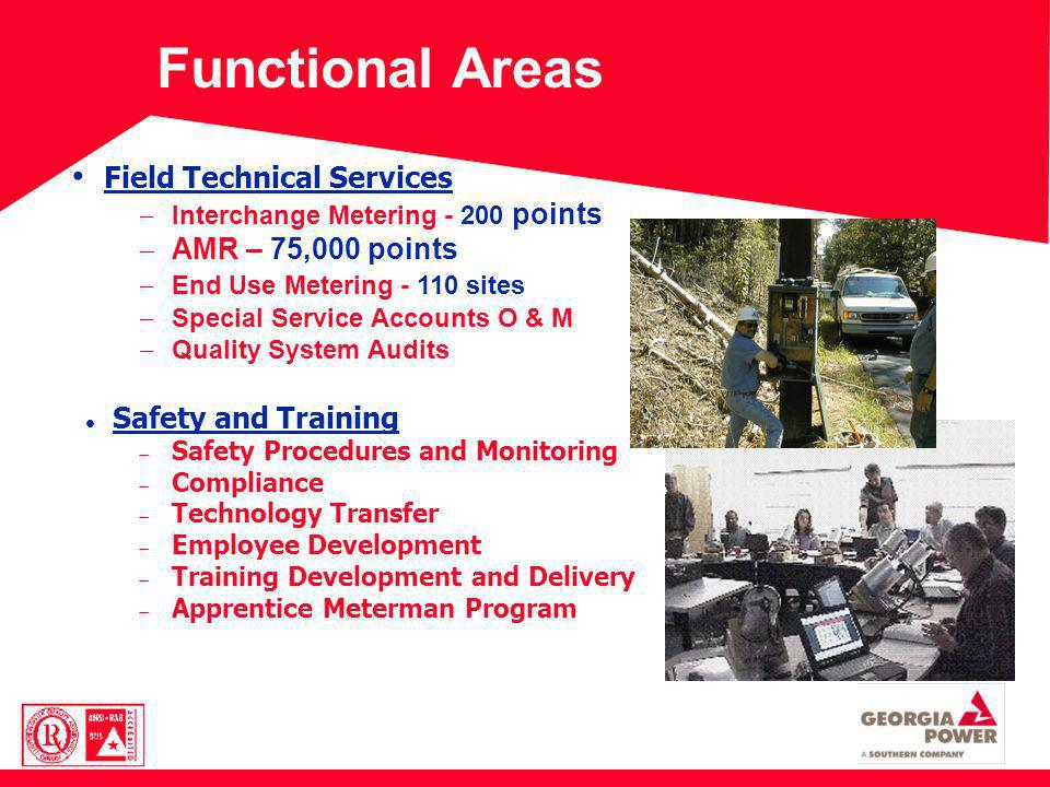 Functional Areas Field Technical Services Interchange Metering - 200 points AMR – 75,000 points End Use Metering - 110 sites Special Service Accounts