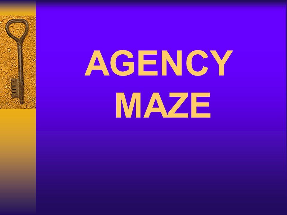 AGENCY MAZE