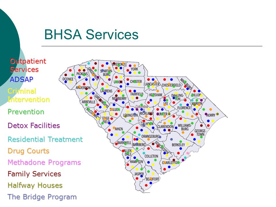 BHSA Services Outpatient Services ADSAP Criminal Intervention Prevention Detox Facilities Drug Courts Methadone Programs Family Services Residential T