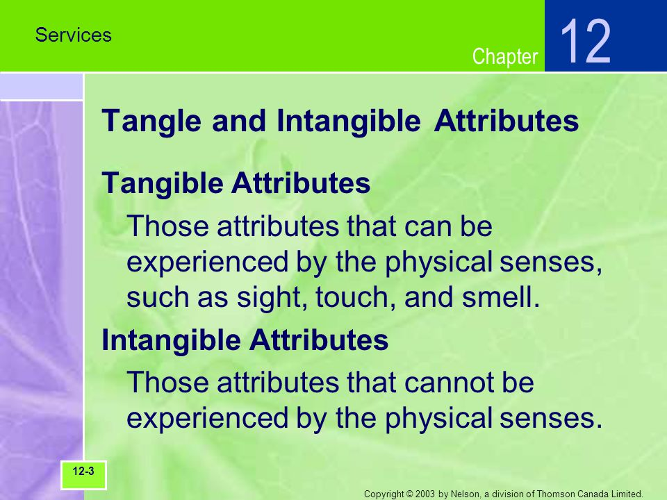 Chapter Copyright © 2003 by Nelson, a division of Thomson Canada Limited. Tangle and Intangible Attributes Tangible Attributes Those attributes that c