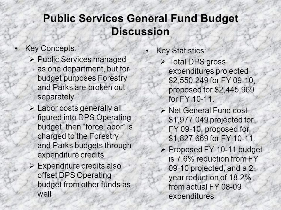 Public Services General Fund Budget History
