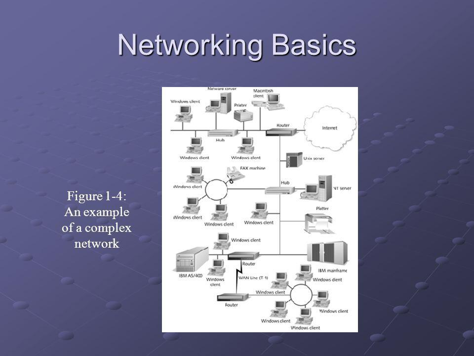 Networking Basics Figure 1-4: An example of a complex network