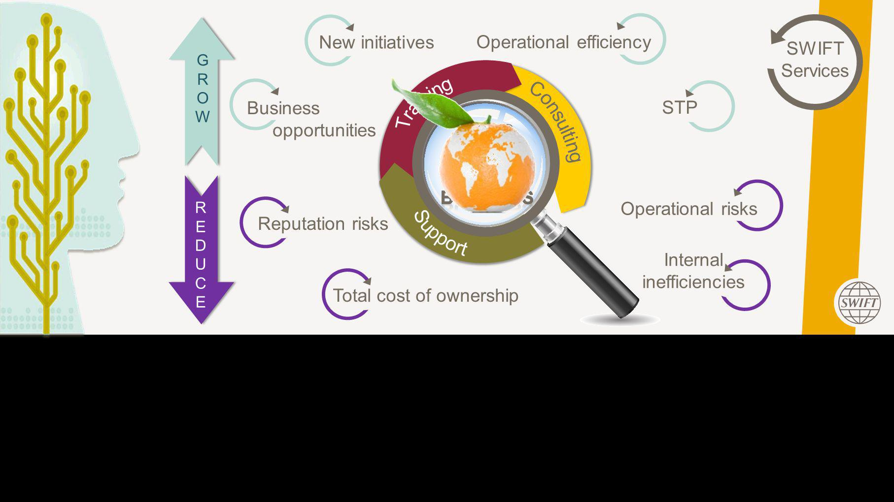 This Area Will Not Be Seen SWIFT Services GROWGROW REDUCEREDUCE Business opportunities New initiatives Operational efficiency STP Reputation risks Total cost of ownership Operational risks Internal inefficiencies