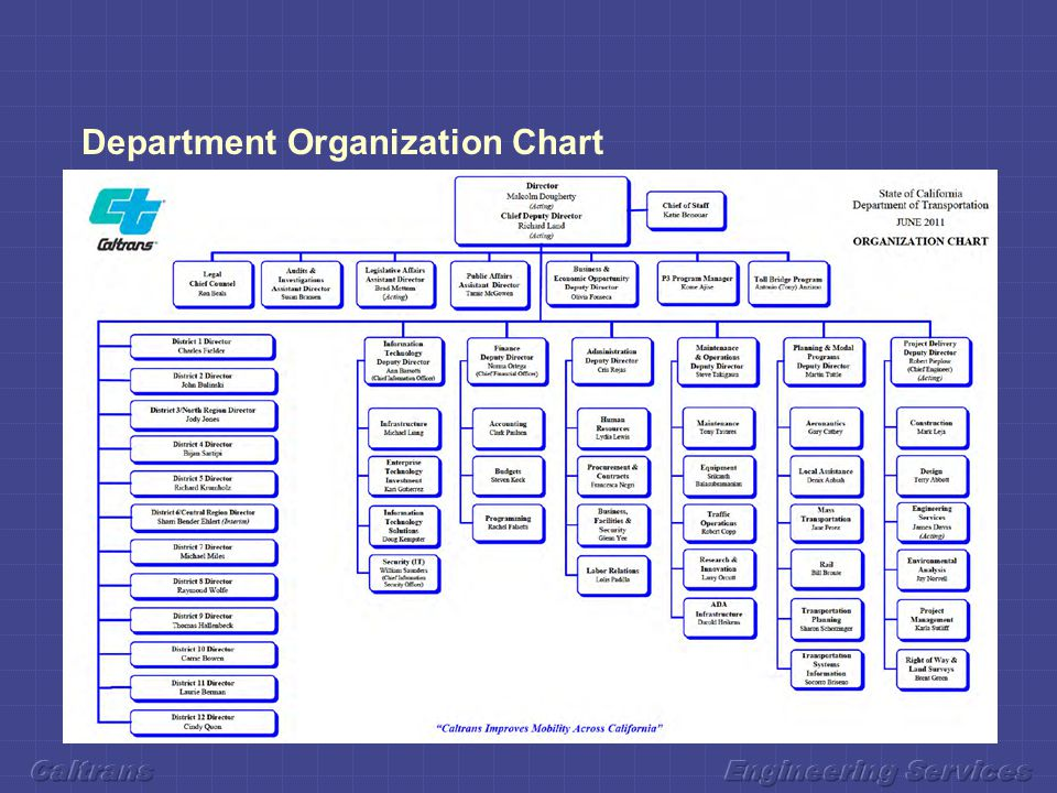 Department Organization Chart