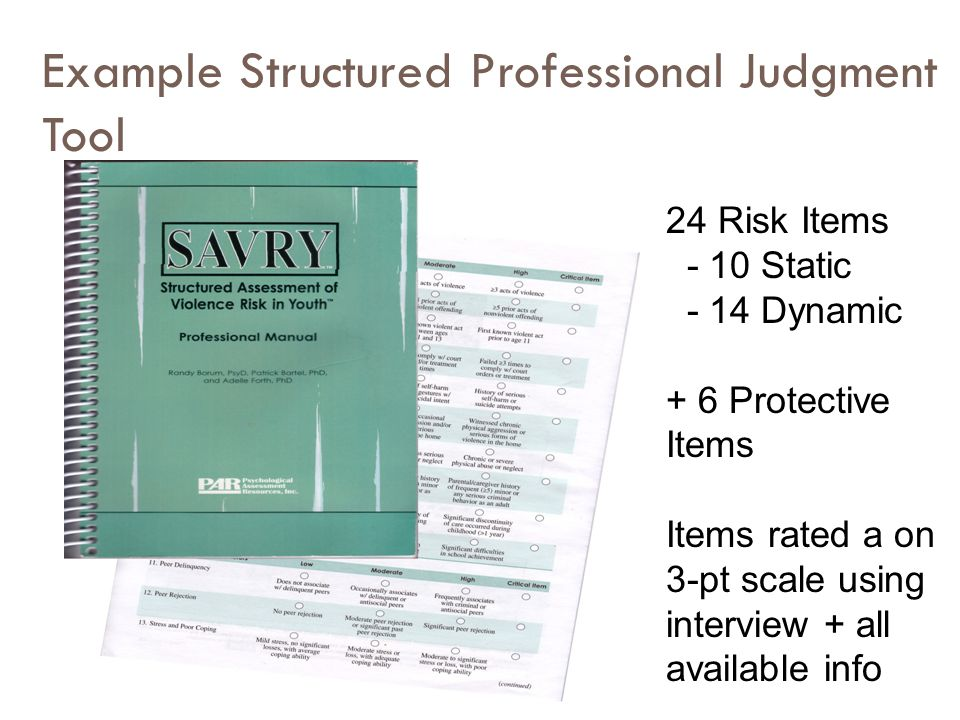 Example Structured Professional Judgment Tool 24 Risk Items - 10 Static - 14 Dynamic + 6 Protective Items Items rated a on 3-pt scale using interview