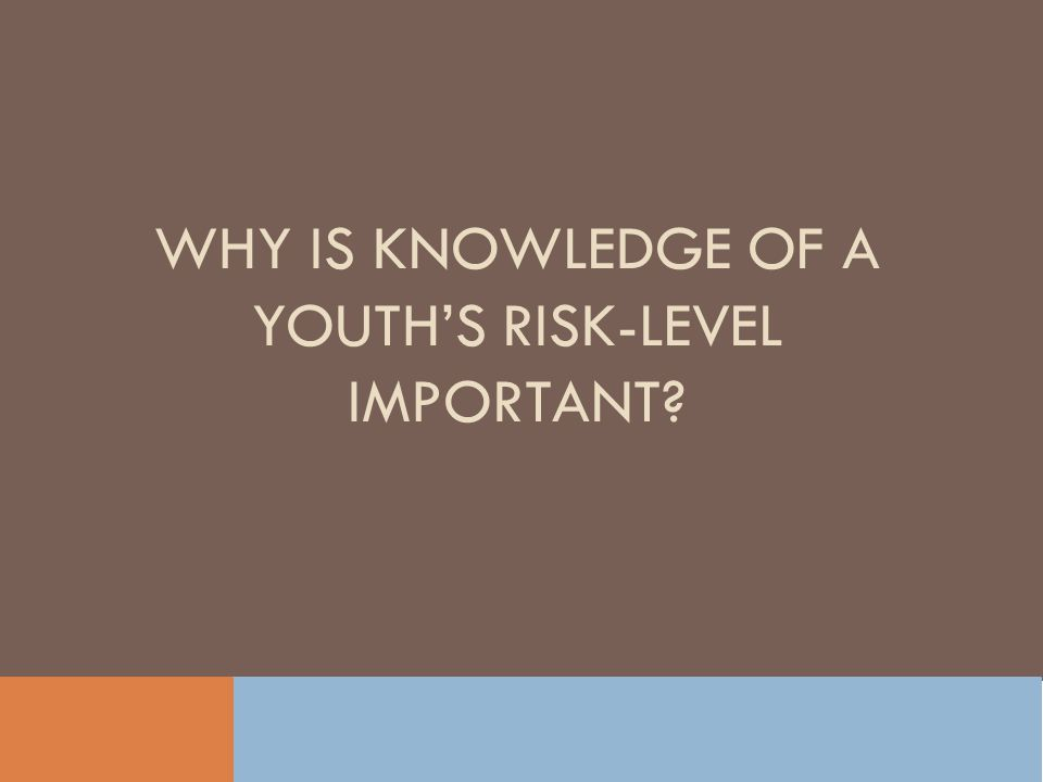 WHY IS KNOWLEDGE OF A YOUTHS RISK-LEVEL IMPORTANT?