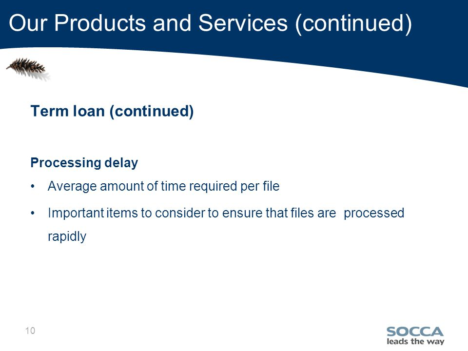 10 Our Products and Services (continued) Term loan (continued) Processing delay Average amount of time required per file Important items to consider to ensure that files are processed rapidly