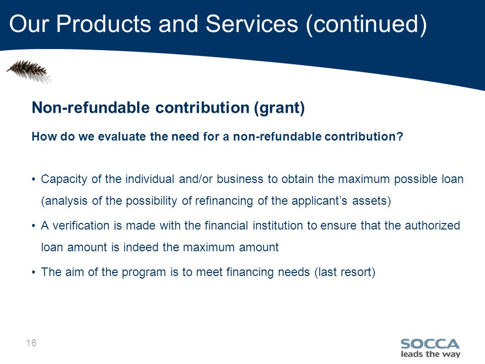 16 Our Products and Services (continued) Non-refundable contribution (grant) How do we evaluate the need for a non-refundable contribution.