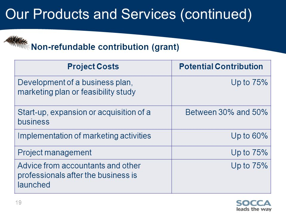 19 Our Products and Services (continued) Non-refundable contribution (grant) Project CostsPotential Contribution Development of a business plan, marketing plan or feasibility study Up to 75% Start-up, expansion or acquisition of a business Between 30% and 50% Implementation of marketing activitiesUp to 60% Project managementUp to 75% Advice from accountants and other professionals after the business is launched Up to 75%