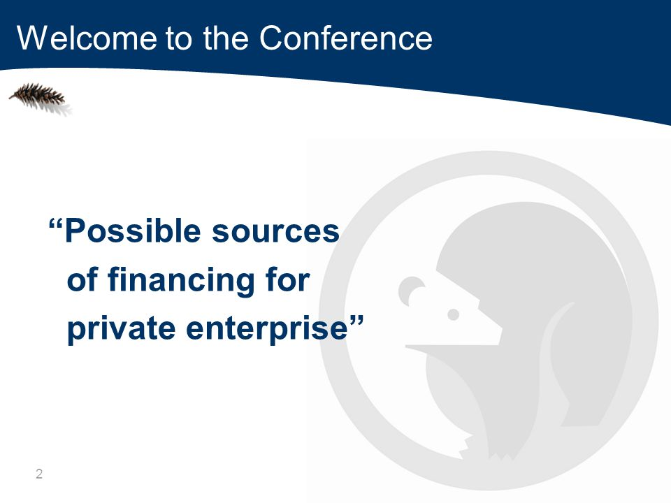 2 Possible sources of financing for private enterprise Welcome to the Conference