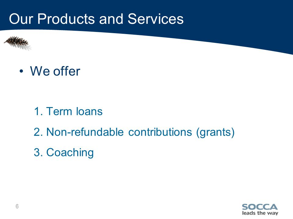 6 We offer 1. Term loans 2. Non-refundable contributions (grants) 3.