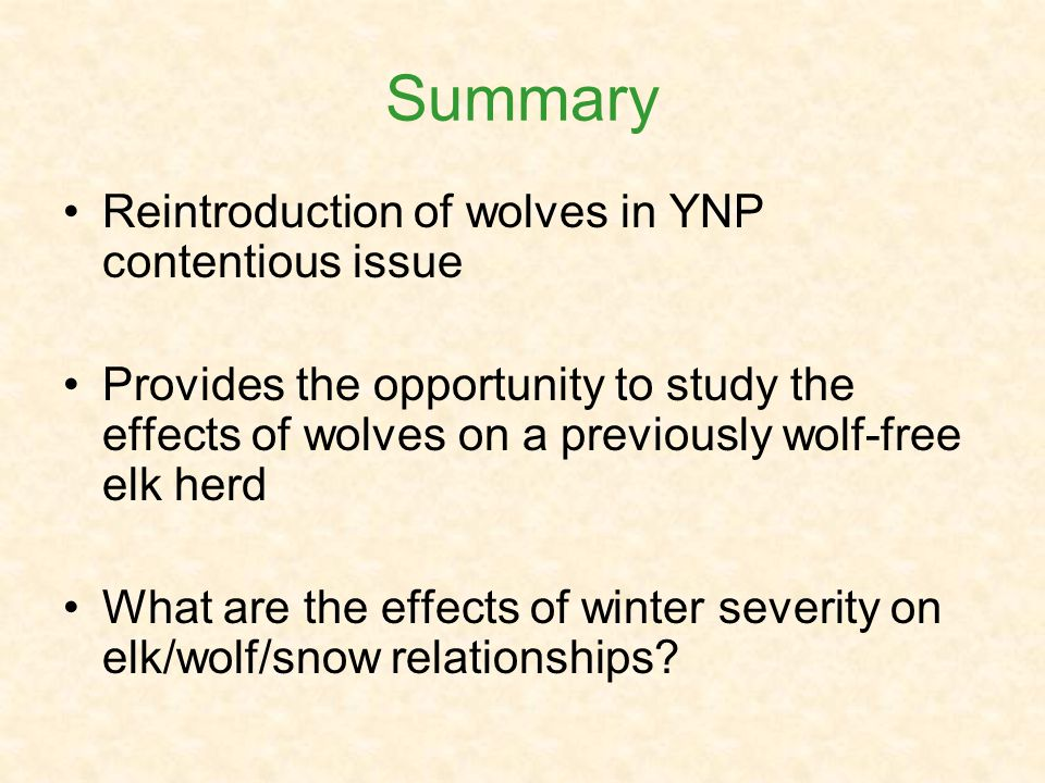 Summary Reintroduction of wolves in YNP contentious issue Provides the opportunity to study the effects of wolves on a previously wolf-free elk herd What are the effects of winter severity on elk/wolf/snow relationships